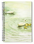 Swans In St. Pierre Spiral Notebook
