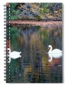 Swans At Betty Allen Spiral Notebook