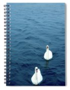 Swans On The Vltava River, Prague Spiral Notebook