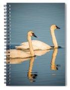 Swans Spiral Notebook