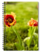 Swaying On A Breeze Spiral Notebook