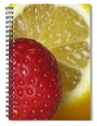 Sweet And Sour Spiral Notebook