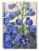 Sweet Delphinium Spiral Notebook