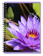 Sweet Dragonfly On Purple Water Lily Spiral Notebook