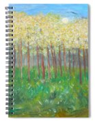Sweet Dreams And Moonbeams Spiral Notebook