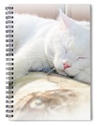 Sweet Dreams Spiral Notebook