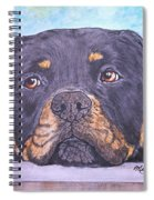 Rottweiler's Sweet Face Spiral Notebook