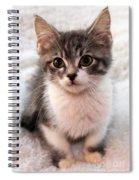 Sweet Face Spiral Notebook