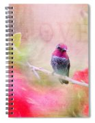 Sweet Hummingbird Love Spiral Notebook