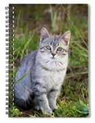 Sweet Little Tabby Kitten Spiral Notebook