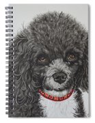 Sweet Miss Molly The Poodle Spiral Notebook