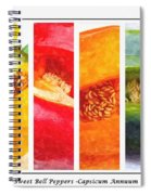 Sweet Pepper Watercolor Spiral Notebook