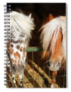Sweet Pony Spiral Notebook