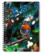 Sweet Robin Redbreast - Impressions Spiral Notebook