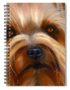 Sweet Silky Terrier Portrait Spiral Notebook