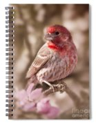 Sweet Songbird Spiral Notebook