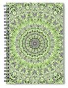 Sweet Spring Mandala Spiral Notebook