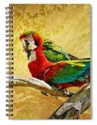 Sweet Sweet Love Spiral Notebook