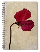 Sweet Textures Spiral Notebook