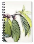 Sweet Tranquility Spiral Notebook