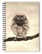Sweetest Owl Spiral Notebook