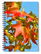 Sweetgum Leaves In Autumn Spiral Notebook