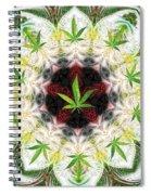 Sweetleaf Mandala Spiral Notebook