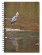 Sweetwater Creek Heron Spiral Notebook