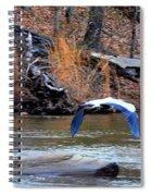 Sweetwater Heron In Flight Spiral Notebook