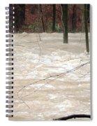 Swift Waters Spiral Notebook