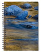 Swiftriver Reflections Spiral Notebook