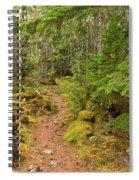 Swim Lake Trail Spiral Notebook