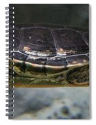 Swim Spiral Notebook