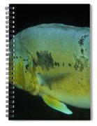 Swimming Spiral Notebook