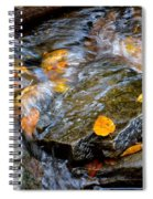 Swirling Stream Of Leaves  Spiral Notebook