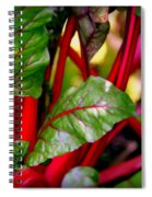 Swiss Chard Forest Spiral Notebook