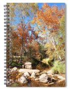 Sycamore And Cottonwood Trees Along The East Verde River Spiral Notebook
