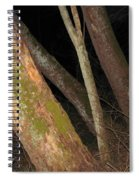 Sycamore Nightscape Spiral Notebook