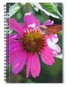 Symbiotic Spiral Notebook