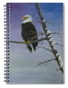 Symbol Of Freedom Spiral Notebook