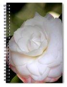 Symmetry 3 Spiral Notebook
