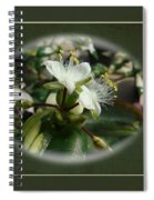 Sympathy Greeting Card - Elegant Floral Green And White Spiral Notebook