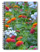Symphony Of Colors Spiral Notebook