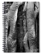 Ta Prohm Roots And Stone 04 Spiral Notebook