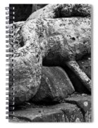 Ta Prohm Roots And Stone 06 Spiral Notebook