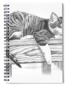 Tabby Cat Spiral Notebook