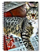 Tabby Cat On Newspaper - Catching Up On The News Spiral Notebook