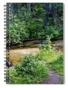 Tacoma Creek 1 Spiral Notebook