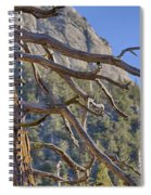 Tahquitz And The Pine Spiral Notebook