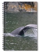 Tail Falls Spiral Notebook